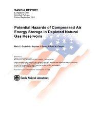 Potential Hazards of Compressed Air Energy Storage in Depleted ...