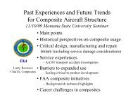 Past Experiences and Future Trends for Composite Aircraft Structure