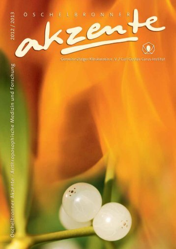 Akzente 2012_13 - Carl Gustav Carus-Institut