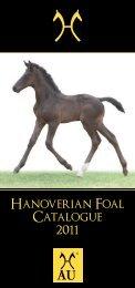 77283 Hanoverian Horse Foal Catalogue 2011.cdr