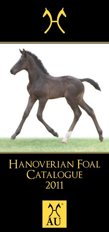 77283 Hanoverian Horse Foal Catalogue 2011.cdr