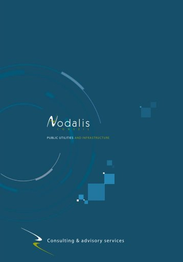 Consulting & advisory services - Nodalis conseil