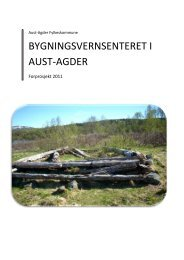 3. Mål med prosjektet - Aust-Agder fylkeskommune