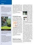 Eine jüdische Beziehungsgeschichte - Deutscher Alpenverein - Seite 7