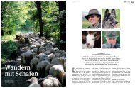 Wandern mit Schafen - AAH-Arbeitsgemeinschaft zur Zucht ...