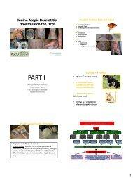 Canine Atopic Dermatitis
