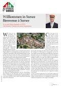 Ausgabe 3 2011 • Zentralfest zum 12. Mal in Sursee ... - Schw. StV - Seite 3