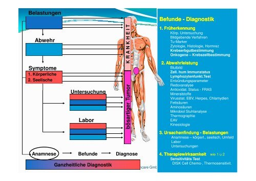 Untersuchung - Komplementäre Onkologie
