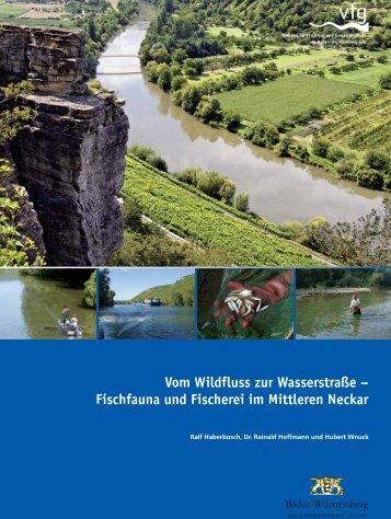 Untersuchungsbericht Mittlerer Neckar - VFG