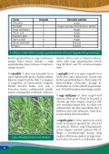 Cheminova: Kalászosok növényvédelme és tápanyagellátása - Page 6