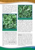 Cheminova: Kalászosok növényvédelme és tápanyagellátása - Page 7