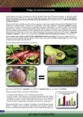 és növényorvoslás 2012 - Page 6