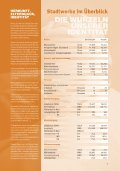 Geschäftsbericht_2010 - Stadtwerke Weimar - Seite 5