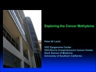 Exploring the Cancer Methylome Peter Laird, University of - Amiando