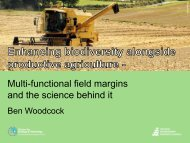 Multi-functional field margins and the science behind it - Amiando