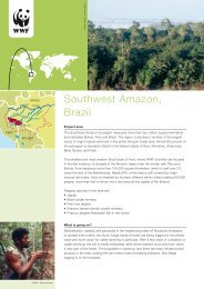 Southwest Amazon, Brazil