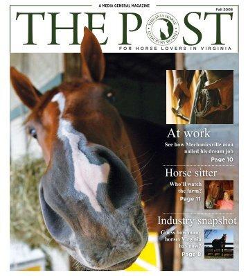 At work - Virginia Horse Industry Board