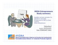 Istanbul - ANIMA Investment Network