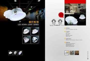 New Type A LED Down Light 2012