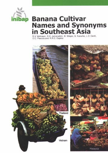 Banana cultivar names and synonyms in Southeast Asia - Bioversity ...
