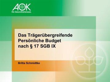 Das Trägerübergreifende Persönliche Budget nach § 17 SGB IX