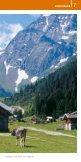 Genusswandern im Stubai: dem Folder als PDF downloaden - Seite 7