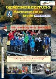 (5,38 MB) - .PDF - Molln