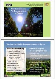 Download - Steuerberater Weinbau