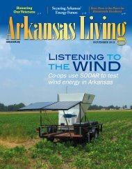 November 2012 - Arkansas Electric Cooperative Corporation