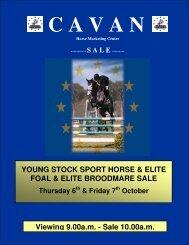 elite foals - Cavan Equestrian and Horse Marketing Centre