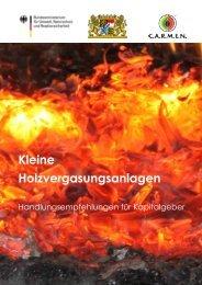 Kleine Holzvergasungsanlagen ... - Holzgas-Info