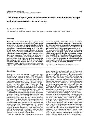MyoD 1-5 -> «* An3 FGFR - Development - The Company of Biologists