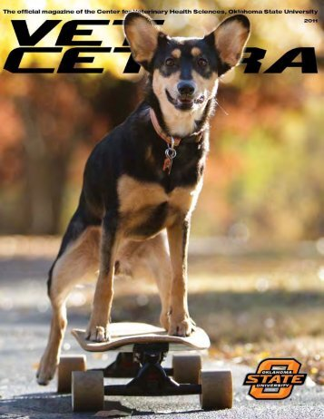 Vet Cetera Magazine 2011 - Oklahoma State University College of ...