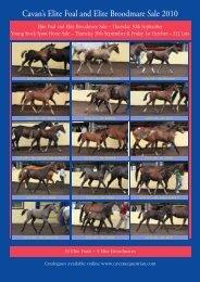 Thursday 30th September & Friday 1st October 220 Foals - Cavan ...