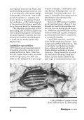 lop 22 - alle sider - Dansk Entomologisk Forening - Page 6