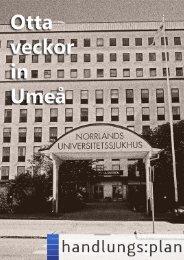 Otta veckor in Umeå - handlungs:plan