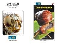 Invertebrates - The E Tutor