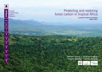 3 - Forest Philanthropy Action Network