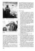 löcker, reschreiter 1997 - Naturhistorisches Museum Wien - Seite 7