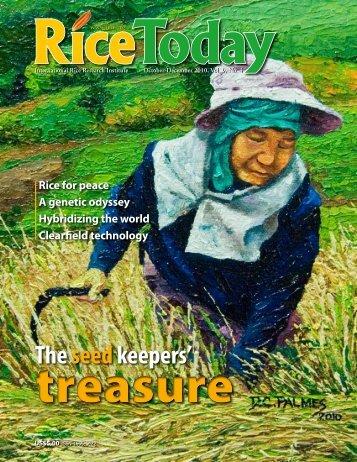 Rice - w