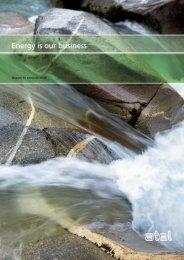 Rapporto annuale 2008 - Atel Holding PDF - Alpiq