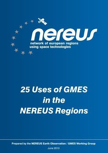 GMES Domain - CNR IREA