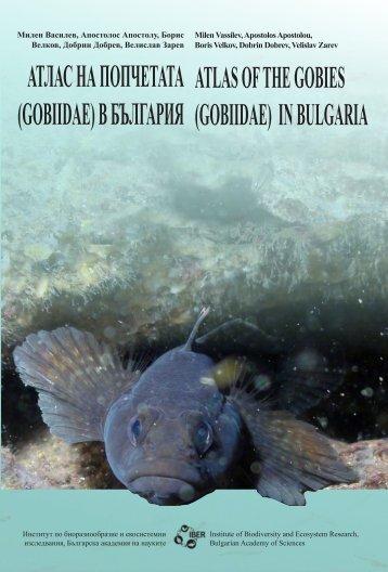ATLAS OF THE GOBIES (GOBIIDAE) IN BULGARIA АТЛАС НА ...