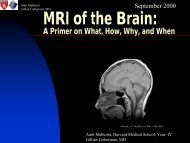 MRI of the Brain: A Primer on What