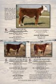 """cowtown select"" sale consignors - Texas Hereford Association - Page 6"