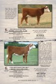 """cowtown select"" sale consignors - Texas Hereford Association - Page 7"