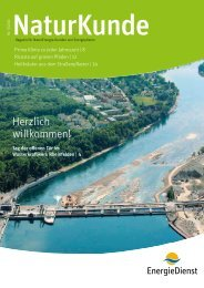 Herzlich willkommen! - NaturEnergie AG
