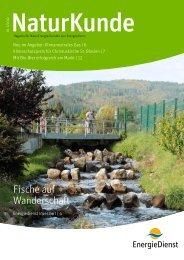 Naturkunde Ausgabe 1-12 - Energiedienst AG