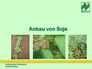 Anbau von Soja - Naturland