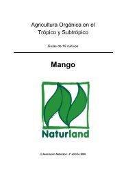 Mango - Naturland